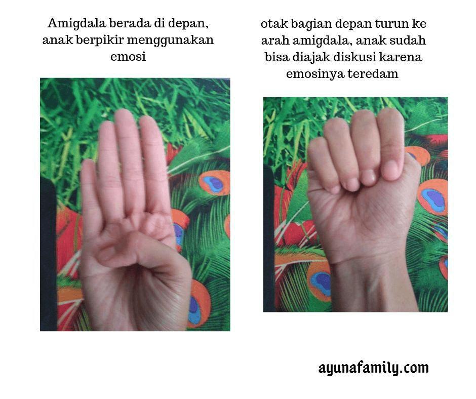 susu pertumbuhan - ayunafamily.com