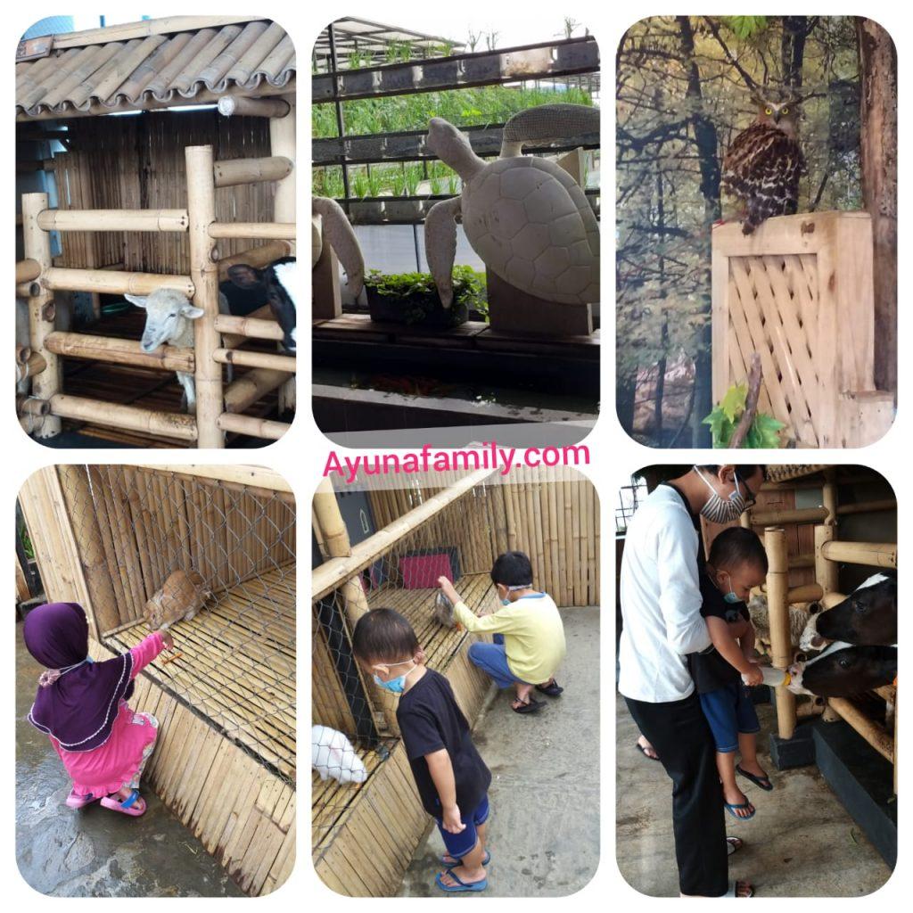 Mini Zoo Grand Tjokro Hotel Bandung
