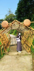 Spot foto di Telaga Pelangi Payang