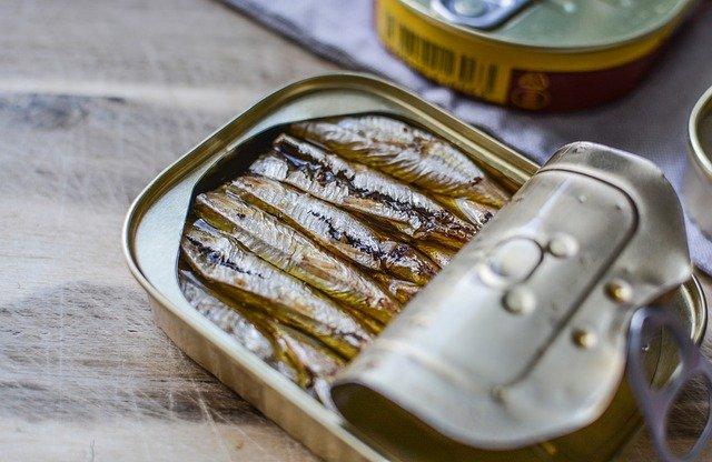 ikan teri, kaya omega 3 untuk imunitas